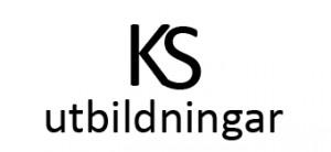 KS text logo transp